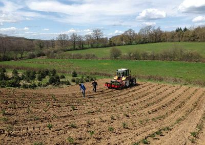 plantation-pioche-finition-ruere